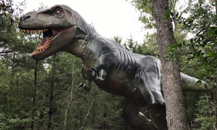 Dinosaur Park: Coupons, Prices, Hours, and More